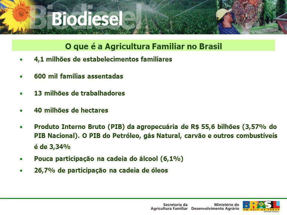 O que é a Agricultura Familiar no Brasil
