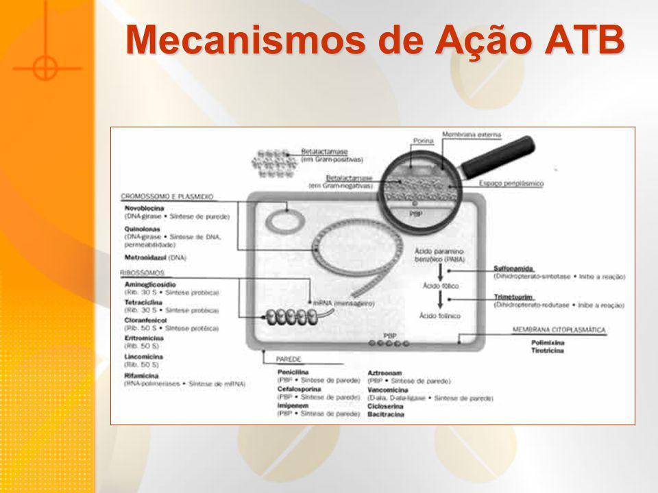 Mecanismos de Ação ATB