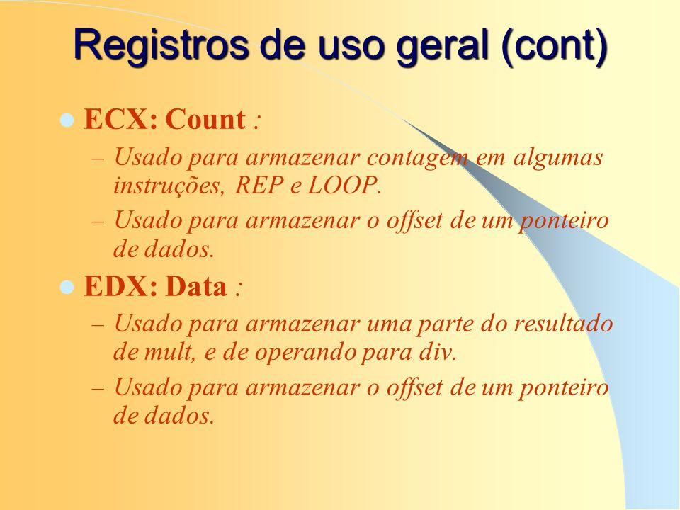Registros de uso geral (cont)