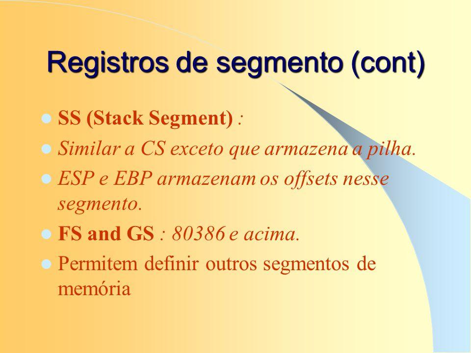 Registros de segmento (cont)