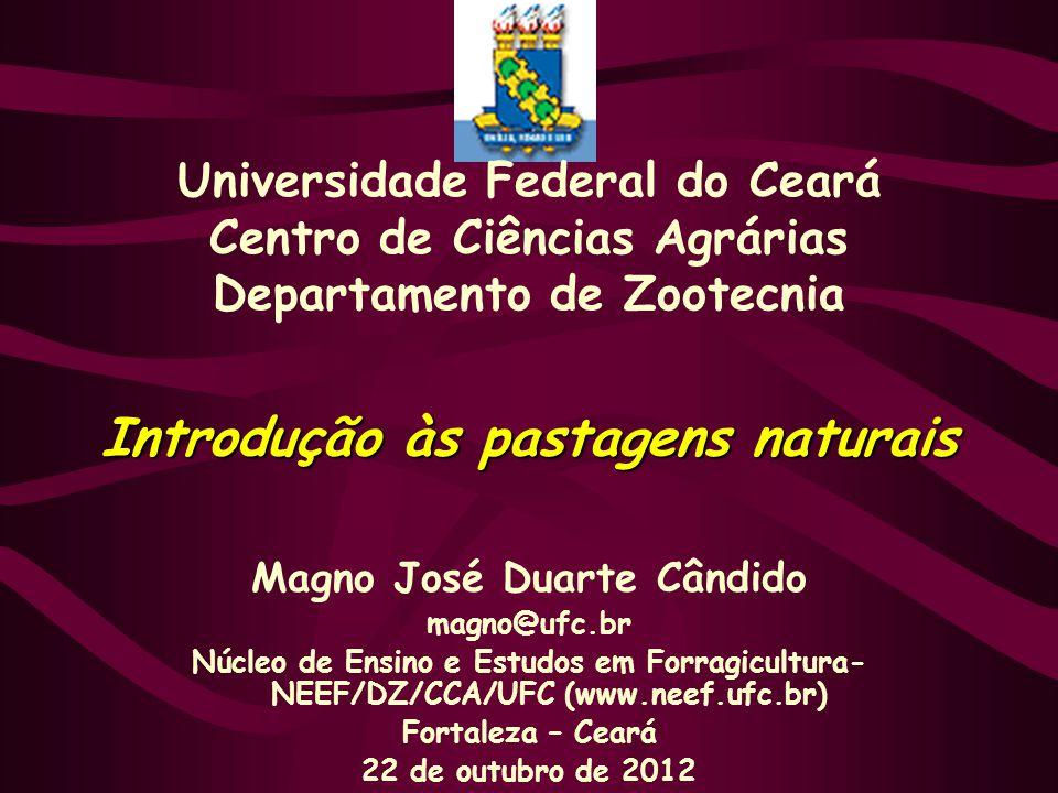 Introdução às pastagens naturais Magno José Duarte Cândido