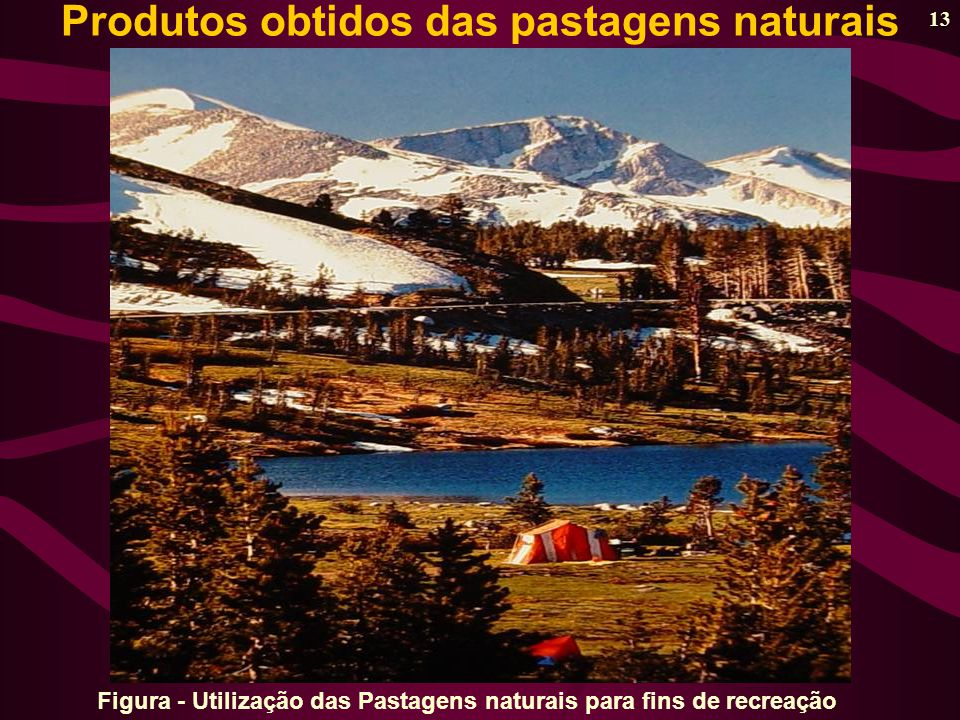 Figura - Utilização das Pastagens naturais para fins de recreação