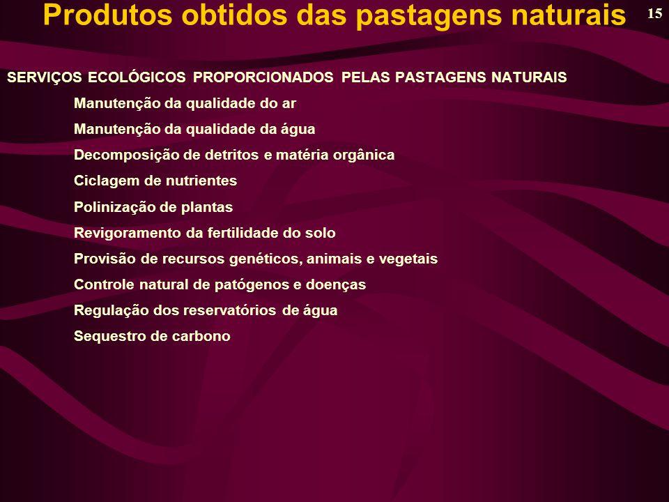 Produtos obtidos das pastagens naturais