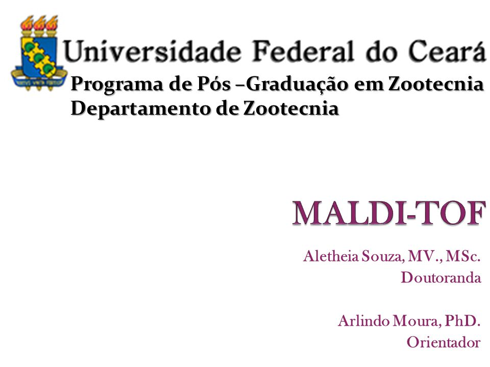 Aletheia Souza, MV., MSc. Doutoranda Arlindo Moura, PhD. Orientador