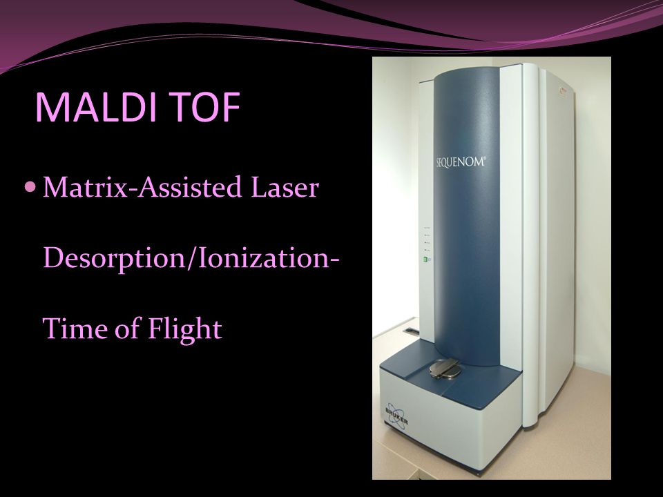 MALDI TOF Matrix-Assisted Laser Desorption/Ionization-Time of Flight