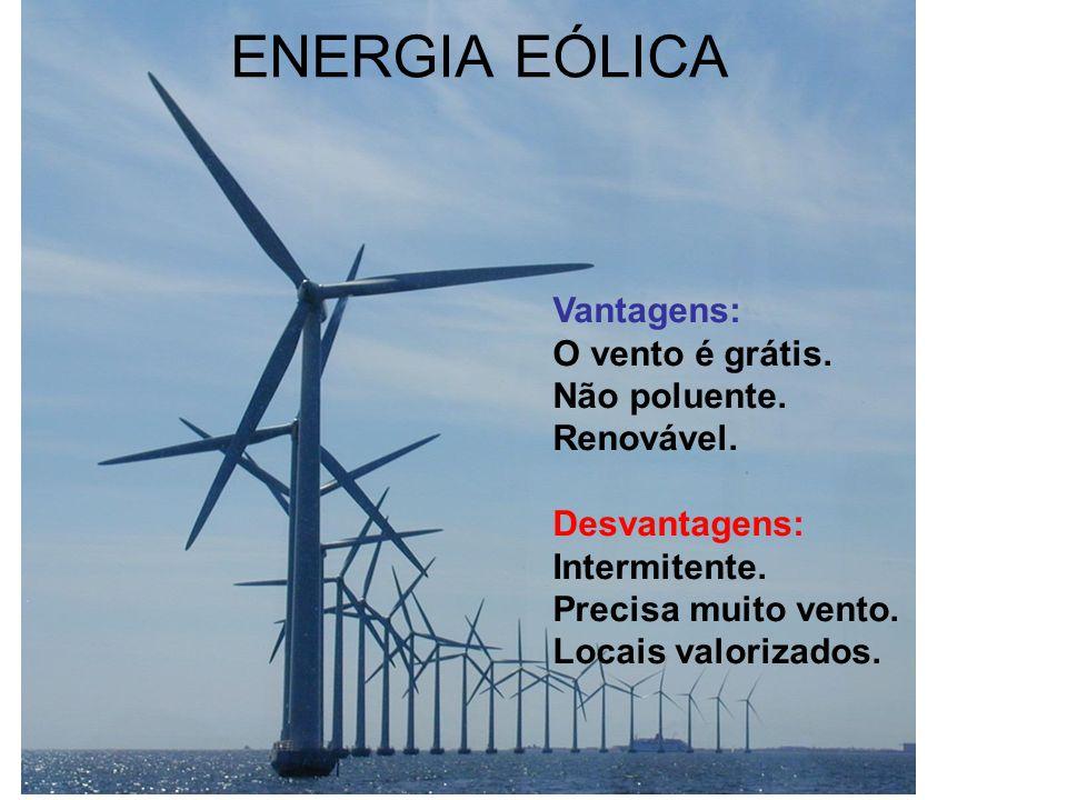 ENERGIA EÓLICA Vantagens: O vento é grátis. Não poluente. Renovável.