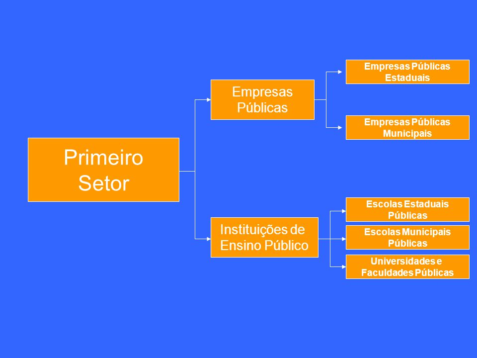 Primeiro Setor Empresas Públicas Instituições de Ensino Público