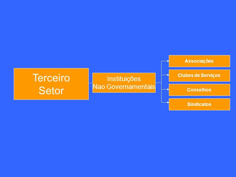 Terceiro Setor Instituições Nao Governamentais Associações