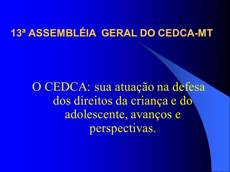 13ª ASSEMBLÉIA GERAL DO CEDCA-MT