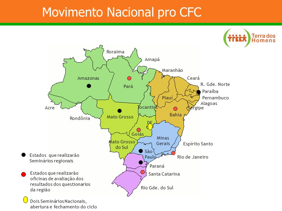 Movimento Nacional pro CFC