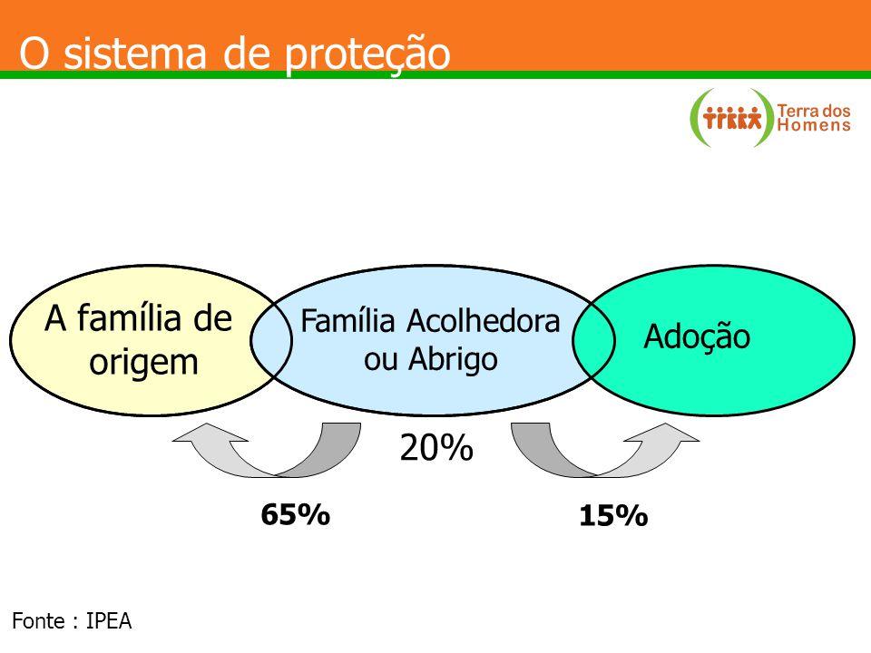 O sistema de proteção A família de origem 20% Adoção