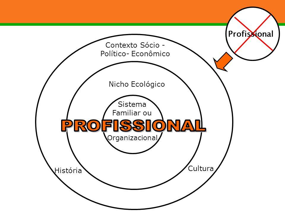 PROFISSIONAL Profissional Contexto Sócio - Político- Econômico