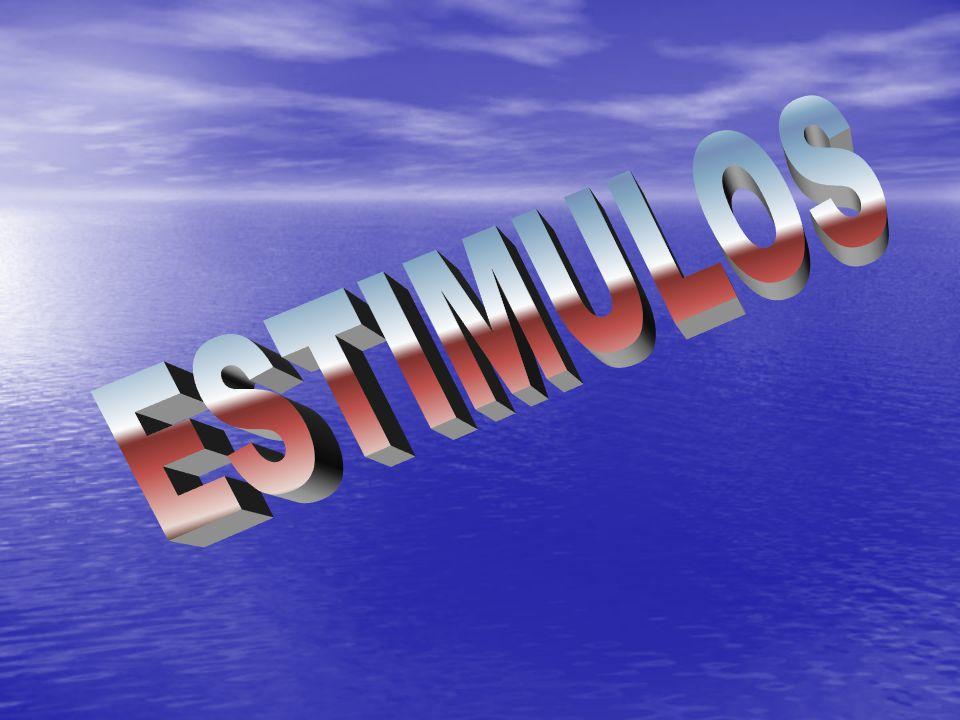 ESTIMULOS