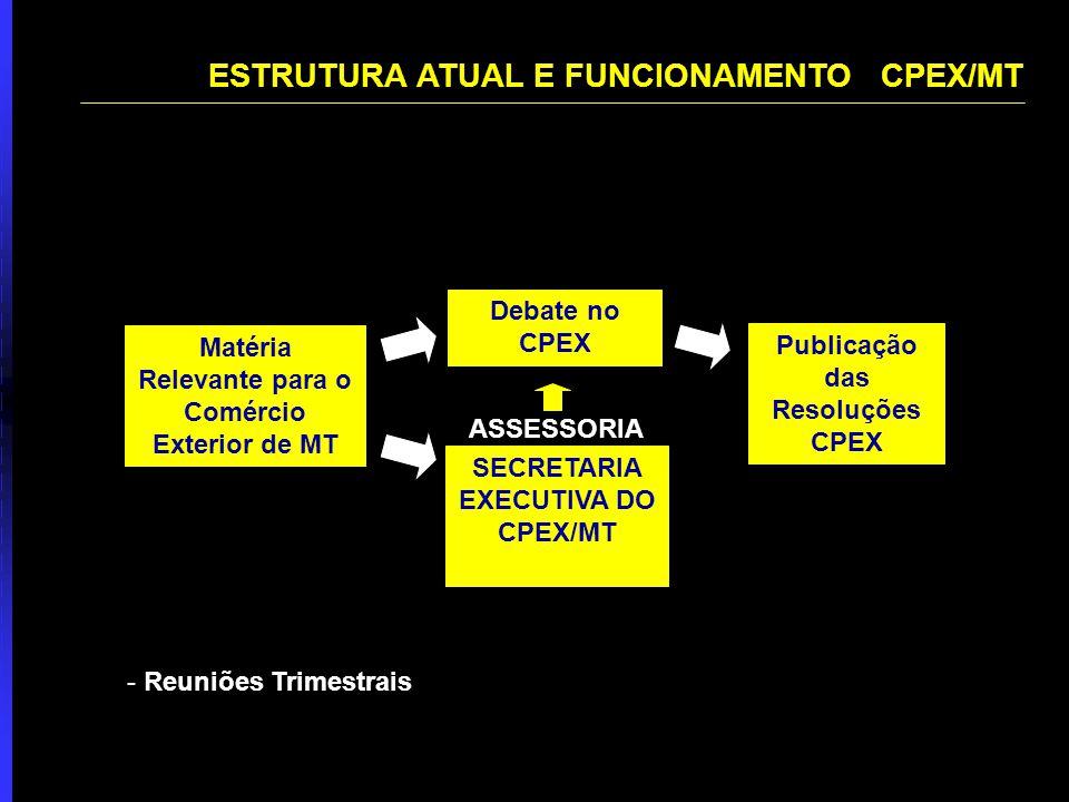 ESTRUTURA ATUAL E FUNCIONAMENTO CPEX/MT