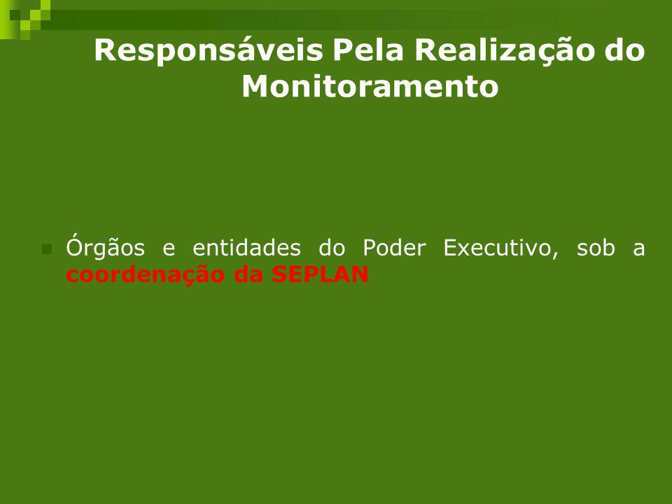 Responsáveis Pela Realização do Monitoramento