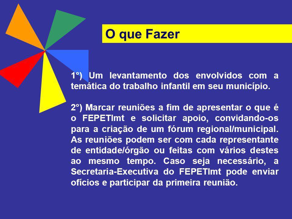 O que Fazer 1°) Um levantamento dos envolvidos com a temática do trabalho infantil em seu município.