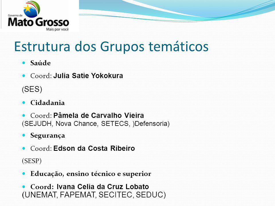 Estrutura dos Grupos temáticos