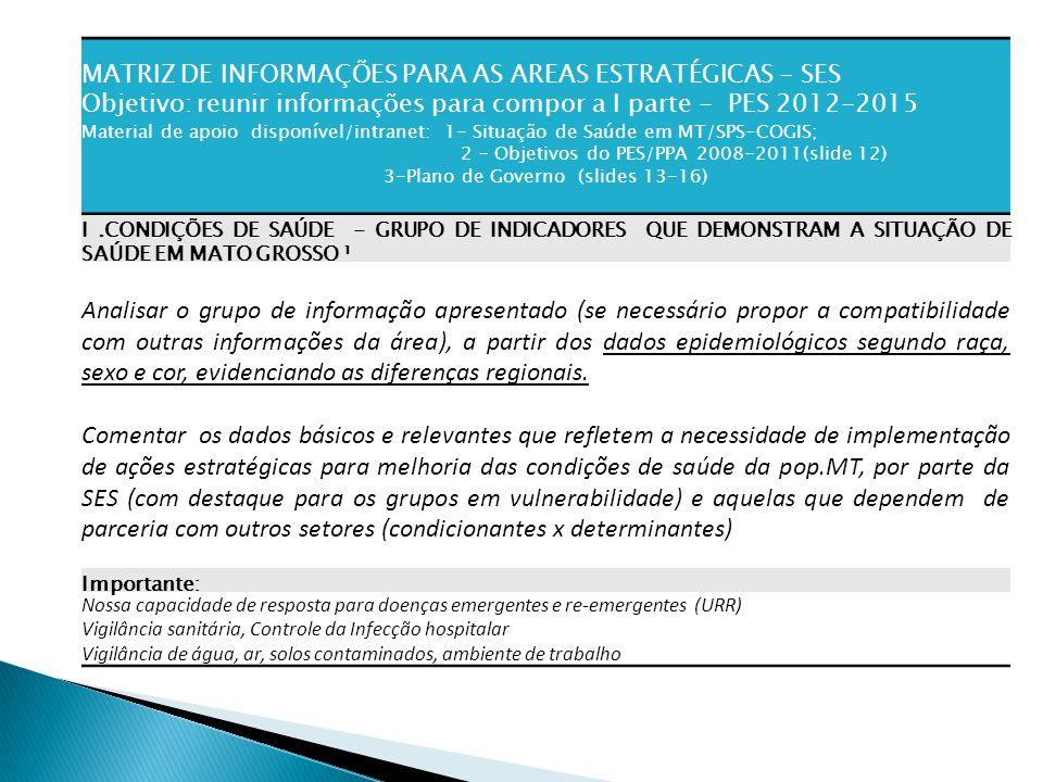 MATRIZ DE INFORMAÇÕES PARA AS AREAS ESTRATÉGICAS - SES Objetivo: reunir informações para compor a I parte - PES 2012-2015