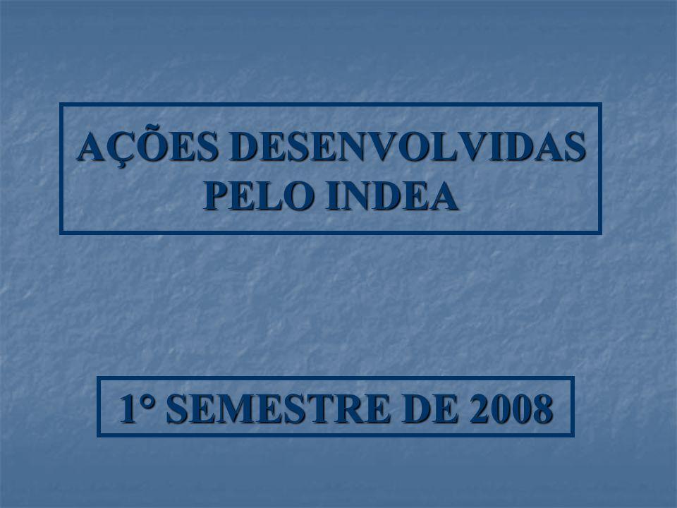 AÇÕES DESENVOLVIDAS PELO INDEA