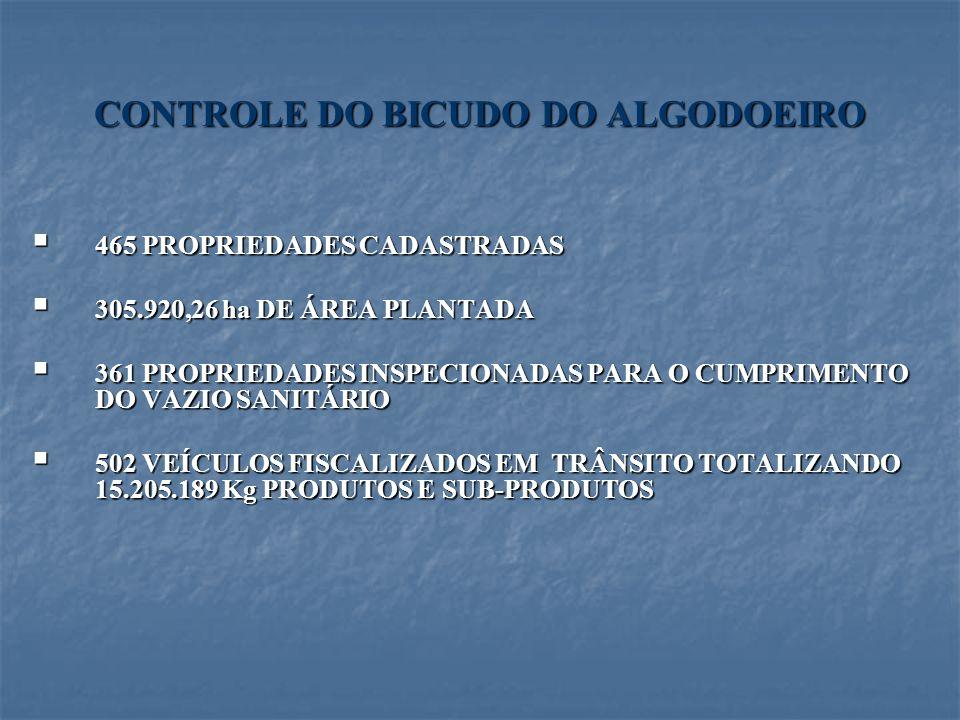 CONTROLE DO BICUDO DO ALGODOEIRO