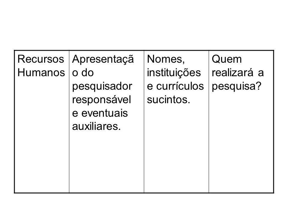 Recursos Humanos Apresentação do pesquisador responsável e eventuais auxiliares. Nomes, instituições e currículos sucintos.