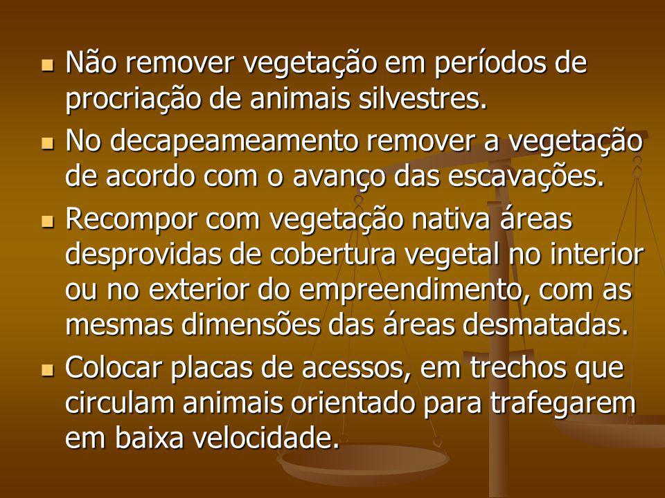 Não remover vegetação em períodos de procriação de animais silvestres.