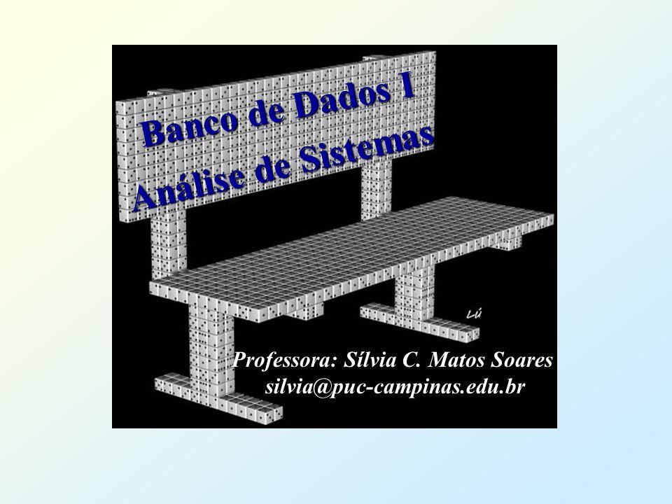 Professora: Sílvia C. Matos Soares