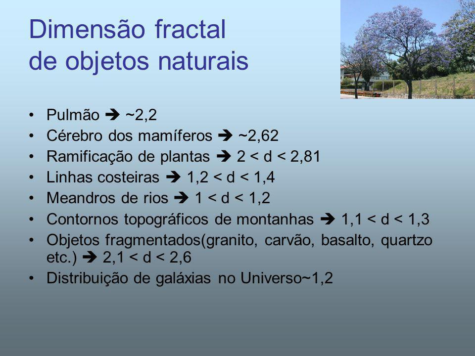 Dimensão fractal de objetos naturais