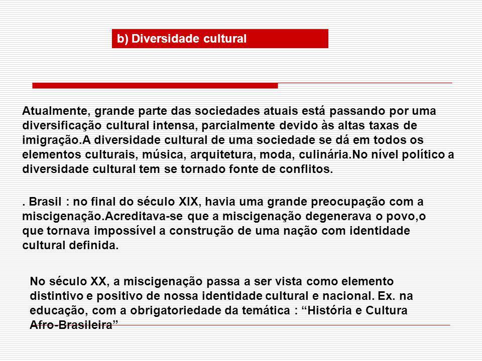 b) Diversidade cultural