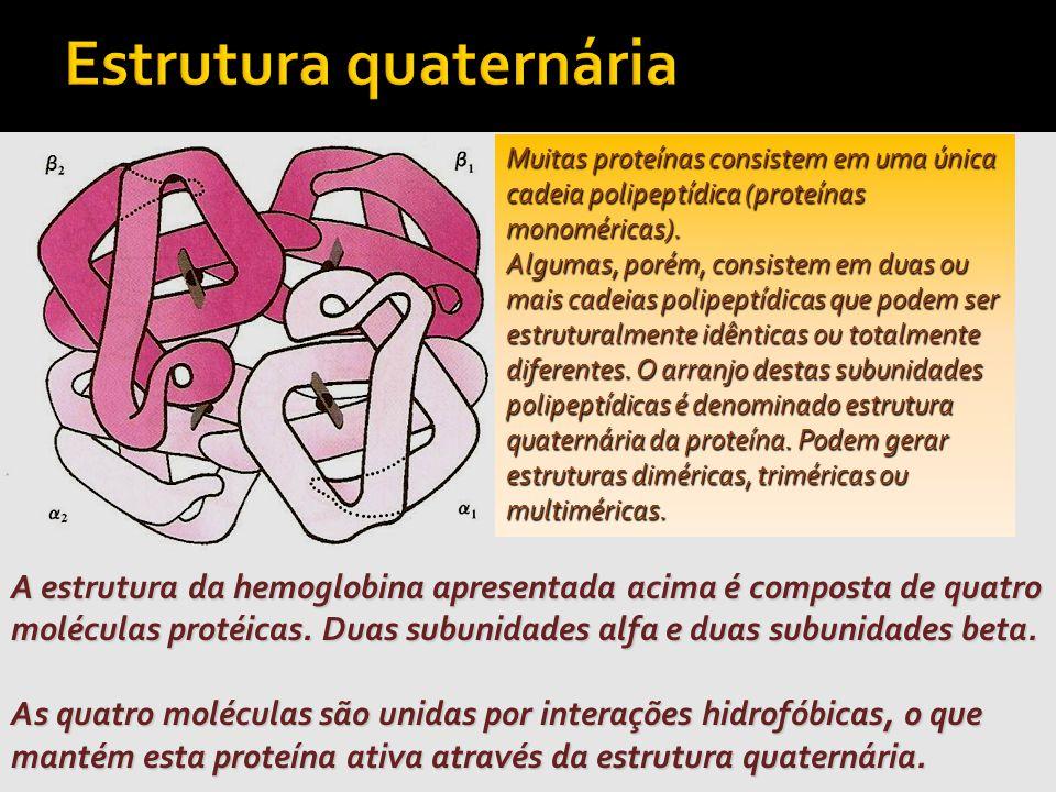 Estrutura quaternária