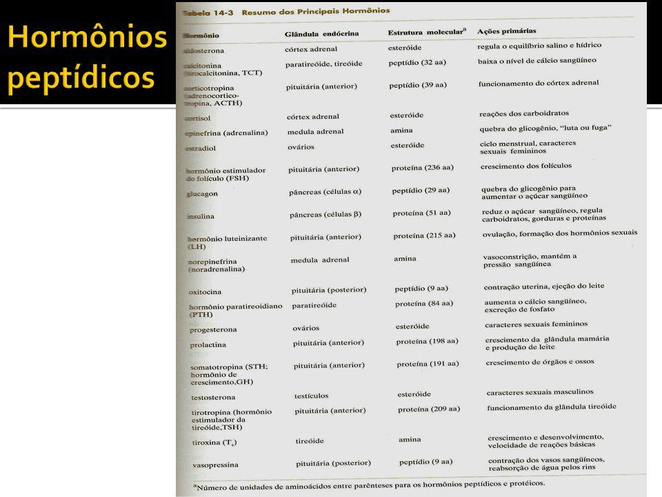 Hormônios peptídicos