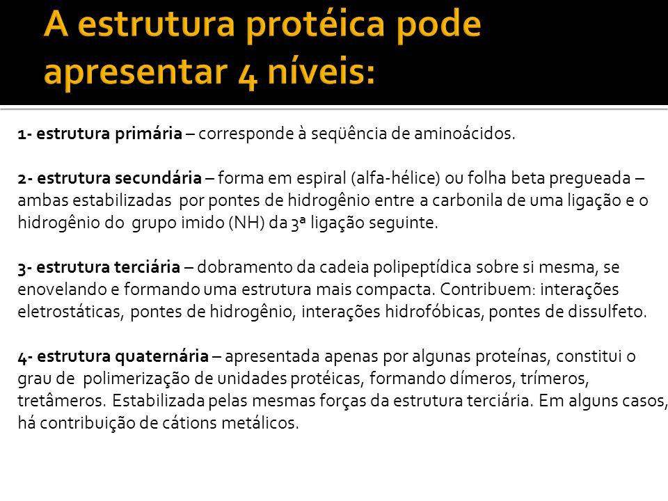 A estrutura protéica pode apresentar 4 níveis: