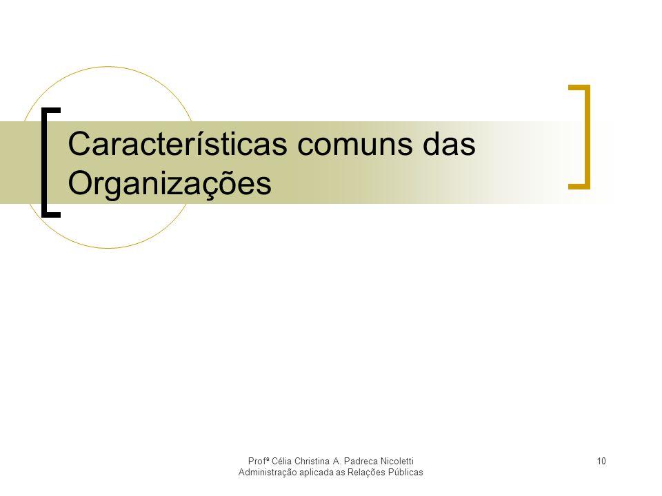 Características comuns das Organizações