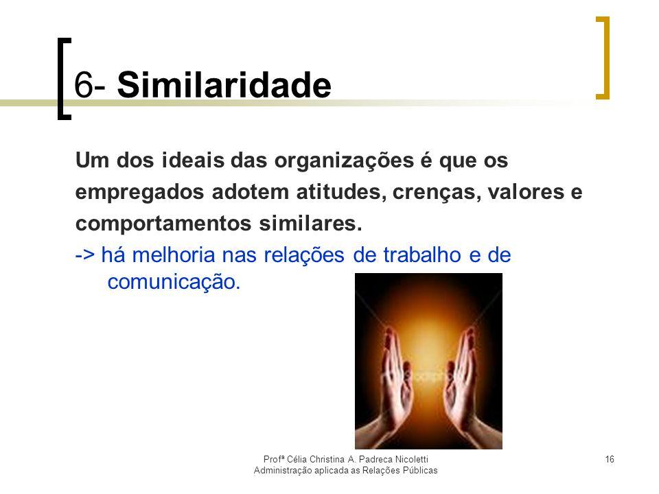 6- Similaridade Um dos ideais das organizações é que os