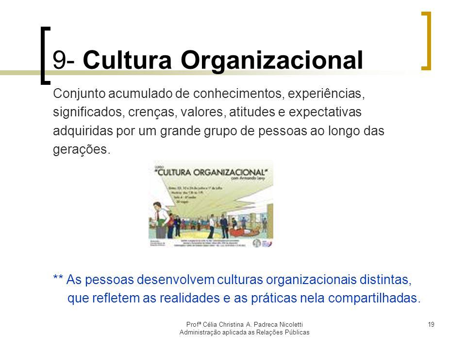9- Cultura Organizacional
