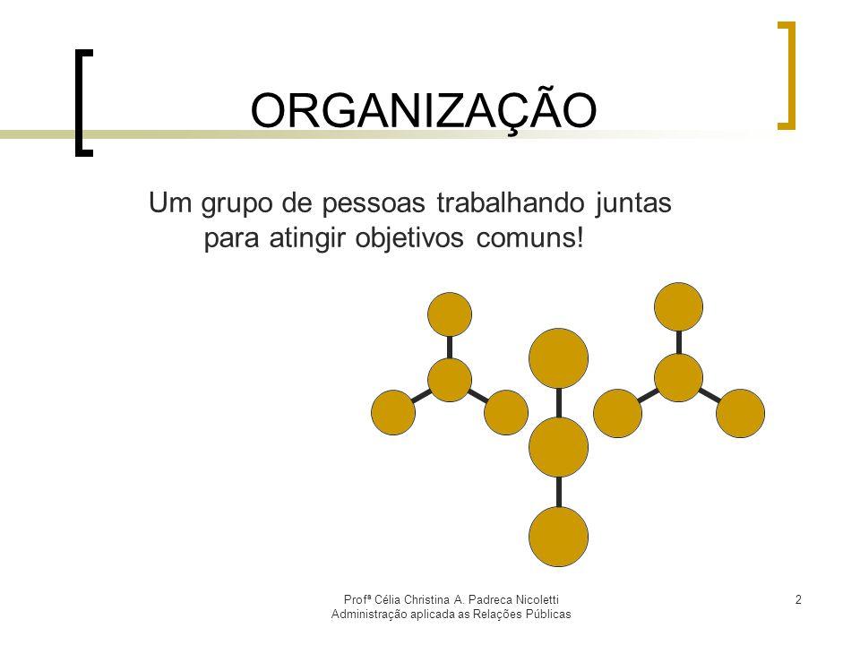 ORGANIZAÇÃO Um grupo de pessoas trabalhando juntas
