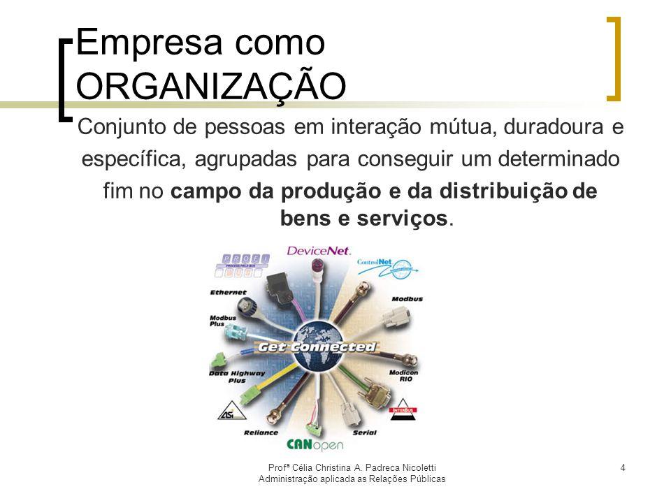 Empresa como ORGANIZAÇÃO