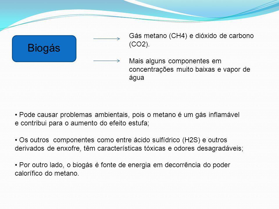 Biogás Gás metano (CH4) e dióxido de carbono (CO2).