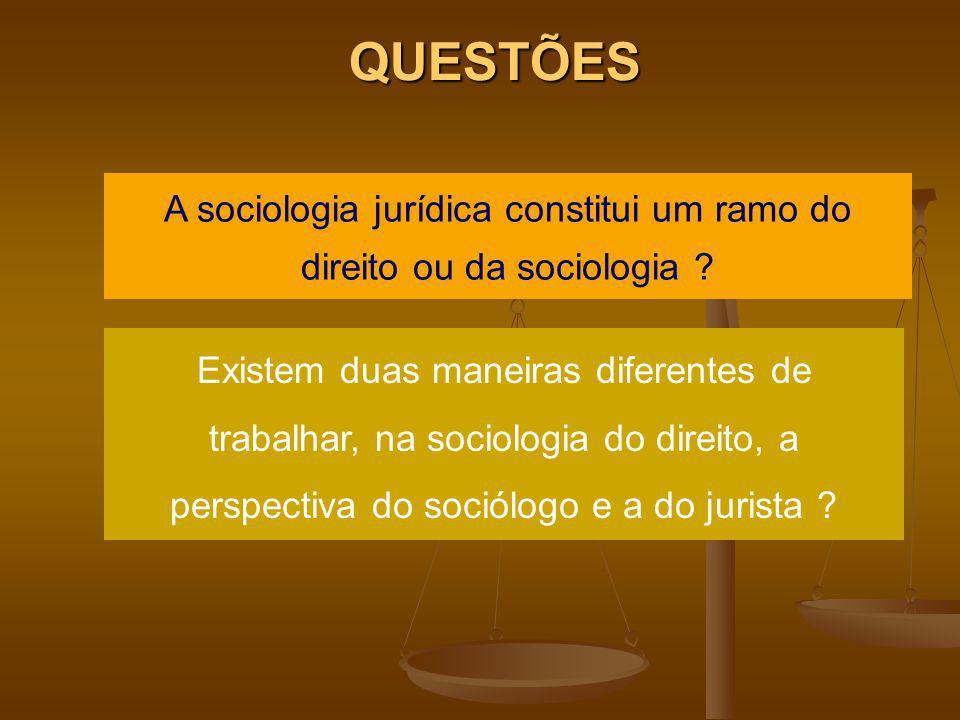 A sociologia jurídica constitui um ramo do direito ou da sociologia