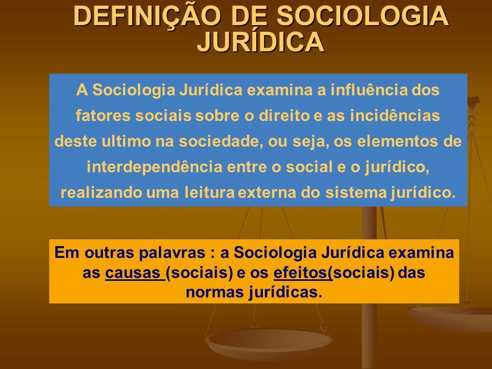 DEFINIÇÃO DE SOCIOLOGIA JURÍDICA
