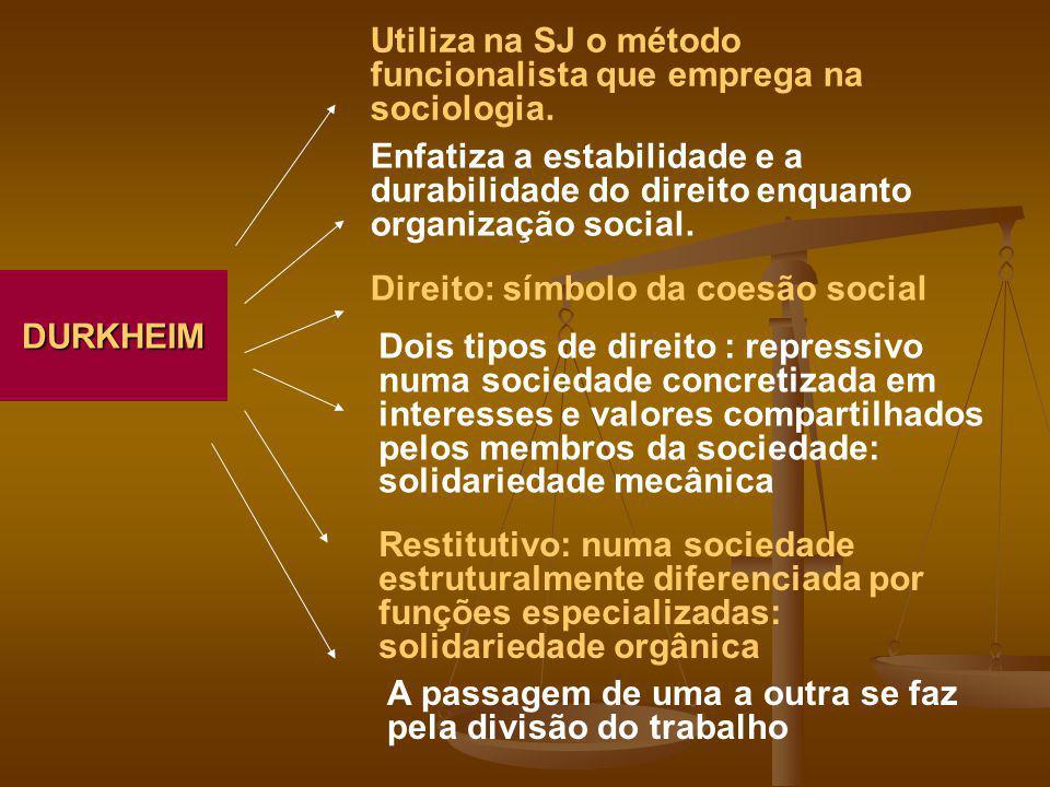 Utiliza na SJ o método funcionalista que emprega na sociologia.