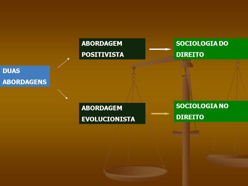 ABORDAGEM POSITIVISTA. SOCIOLOGIA DO. DIREITO. DUAS. ABORDAGENS. SOCIOLOGIA NO. DIREITO. ABORDAGEM.