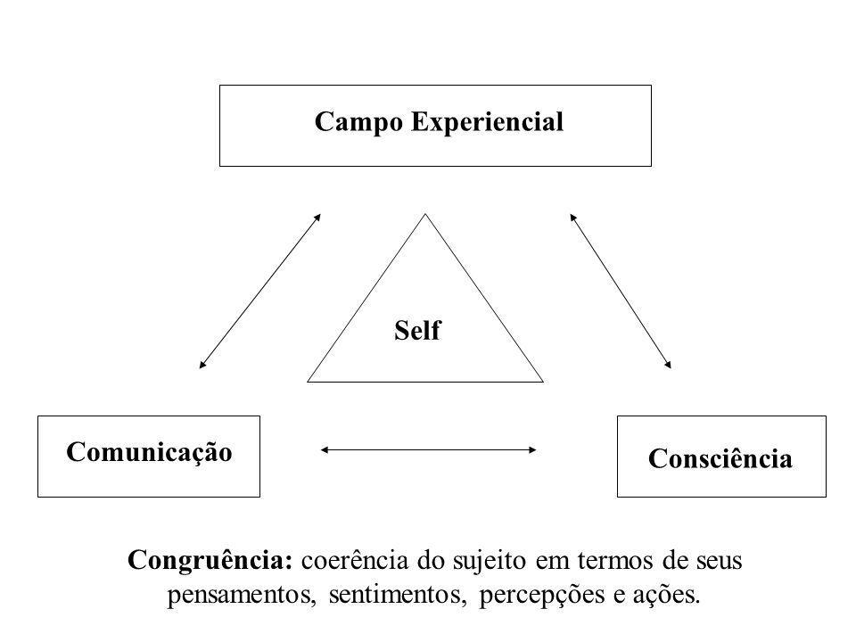 Campo Experiencial Self. Comunicação. Consciência.