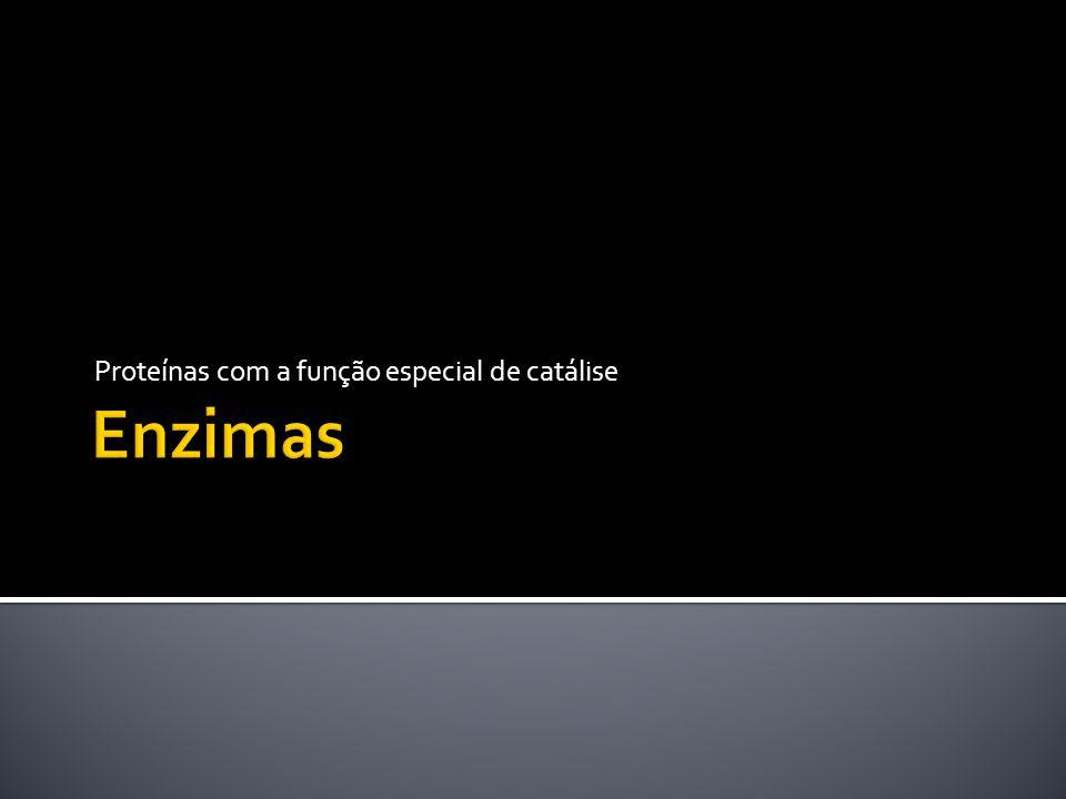Proteínas com a função especial de catálise