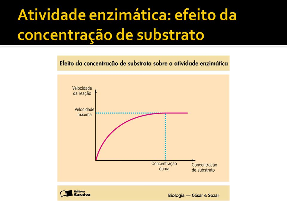 Atividade enzimática: efeito da concentração de substrato