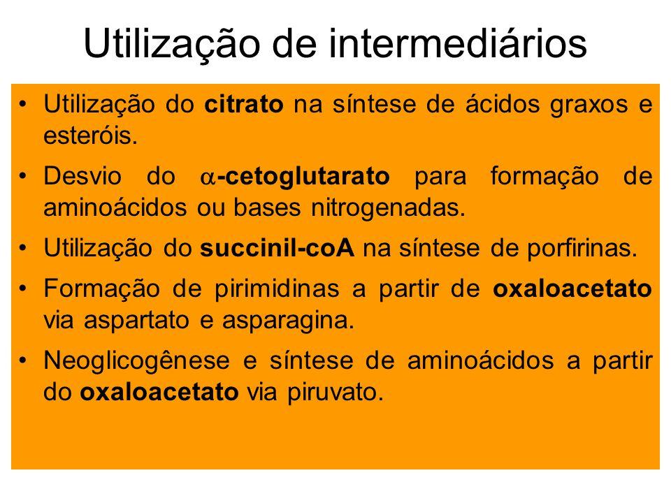 Utilização de intermediários