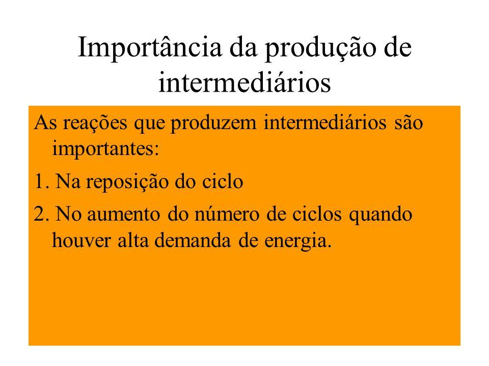 Importância da produção de intermediários