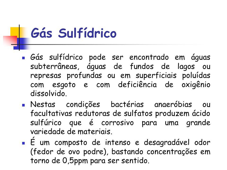 Gás Sulfídrico
