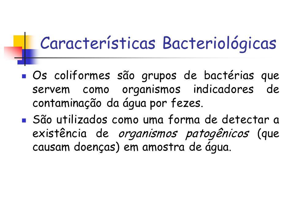 Características Bacteriológicas