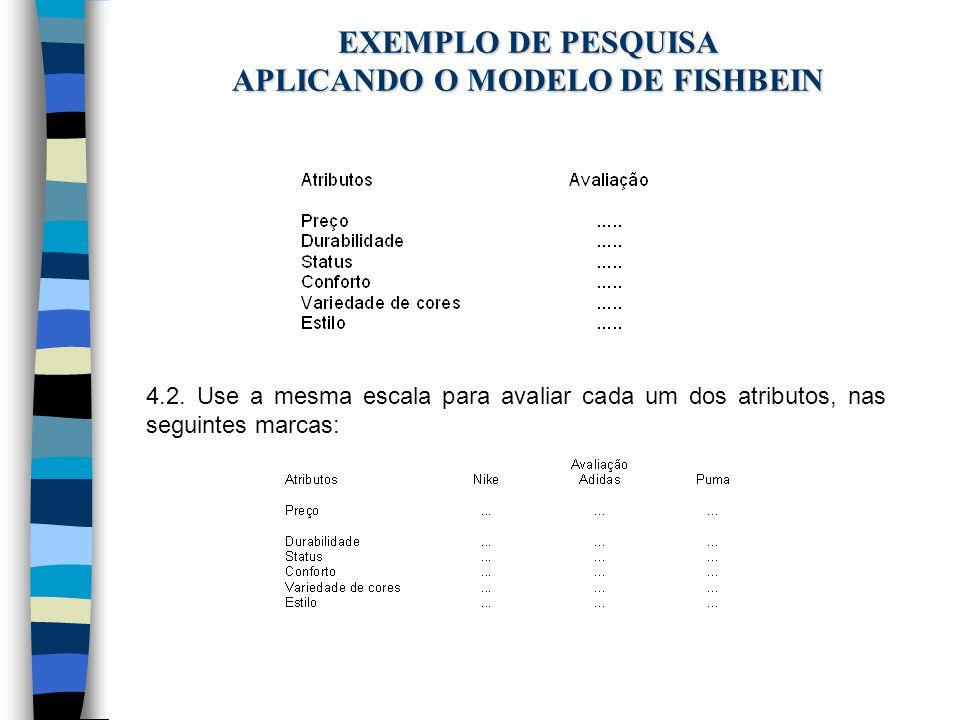 EXEMPLO DE PESQUISA APLICANDO O MODELO DE FISHBEIN